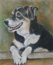 Entlebucher Mountain Dog, mountain dog painting