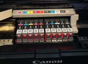 pigment inks, lightfast inks, giclee prints
