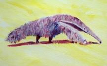 anteater art, anteater gift
